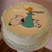 Snoopy Graphic